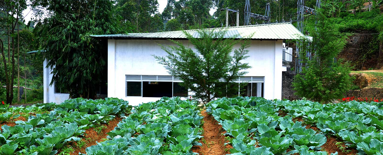 csr and sustainable development